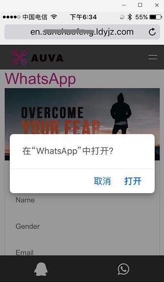 手机端点击WhatsApp可以直接调用成功.jpg